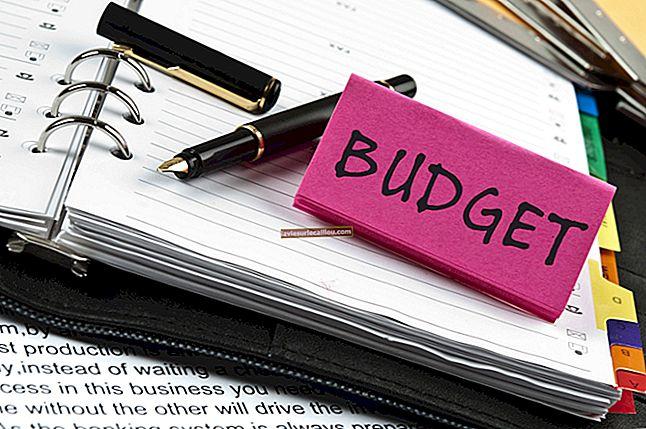 예산 통제